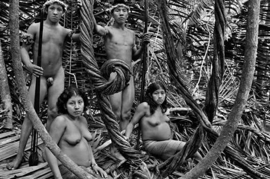 salgado amazonas